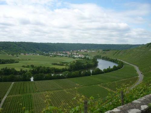 mundelsheim-2014--0051