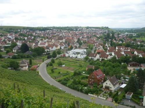 mundelsheim-2014--0095